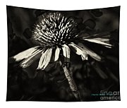Echinacea  Tapestry