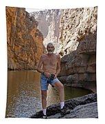 D17842-ed Cooper  Tapestry