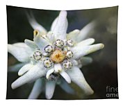 Edelweiss Tapestry