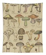 Edible And Poisonous Mushrooms Tapestry