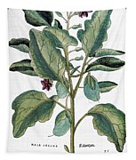 Eggplant, 1735 Tapestry