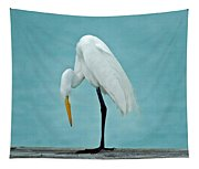 Egret Foot Inspection Tapestry