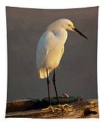 Egret Glow Tapestry