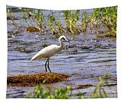 Egret On A Rock Tapestry