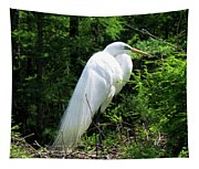 Egret On Guard Tapestry