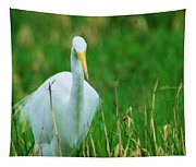 Egret Stare Down Tapestry