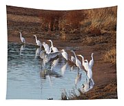 Egrets Gathering For Fishing Contest. Tapestry