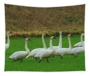 Eight Beautiful Swans Tapestry