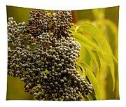 Elderberry Tapestry