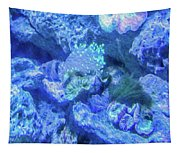 Electric Coral Tapestry