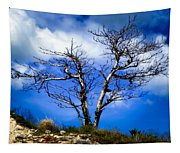 Elegance Of Time  Tapestry