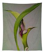 Elegant Calla Buds Tapestry