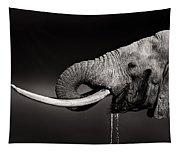 Elephant Bull Drinking Water - Duetone Tapestry