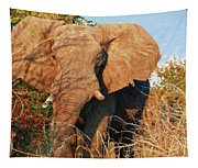 Elephant On Approach Tapestry