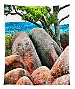 Elephant Rocks And Tree Tapestry