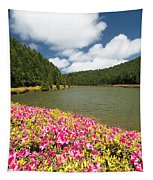 Empadadas Lakes II Tapestry