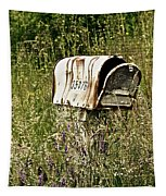 Empty Mailbox At 35476 Tapestry