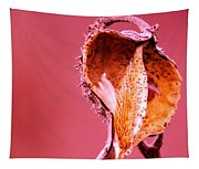 Empty Seed Pod  Tapestry