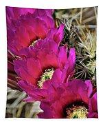Engleman's Hedgehog Cactus  Tapestry