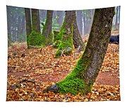 Enjoying The Forest Of Oak Run Tapestry