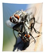 Entomologists Discover Why People Want To Be A Fly On The Wall Tapestry