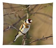 European Goldfinch 2 Tapestry