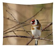 European Goldfinch 3 Tapestry
