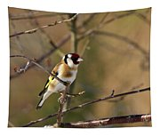 European Goldfinch 4 Tapestry