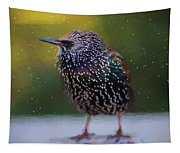 European Starling - Painted Tapestry