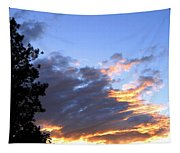 Evening Color Tapestry