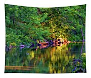 Evening On The Humber River - Paint Tapestry