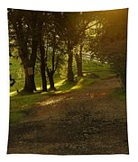 Evening Path Tapestry