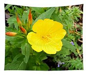 Yellow Sundrop Tapestry
