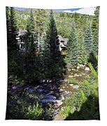 Ever Vail Tapestry