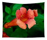 Evolution Of The Trumpet Flower II Tapestry