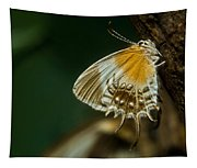Exotic Butterfly On Tree Bark Tapestry