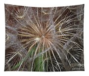 Experience The Dandelion Tapestry