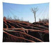Exposed And Eroded Badlands Tapestry