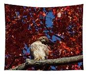 Expressive Hawk Tapestry