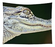 Eye Of The Alligator Tapestry