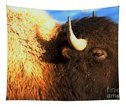 Eyes Of The Bison Spring 2018 Tapestry