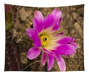 Faded Cactus Beauty Tapestry