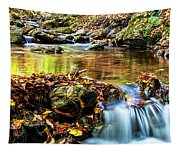 Fall Brook Tapestry