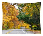 Fall Color Along Road  5643 Tapestry