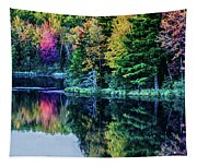 Fall Color Explosion Tapestry
