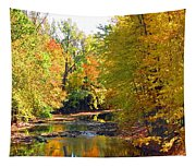Fall Color On Creek  5597 Tapestry