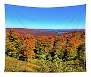 Fall Color On The Fulton Chain Of Lakes Tapestry