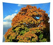 Fall Colors 19 Tapestry