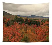 Fall Colors In White Mountains New Hampshire Tapestry