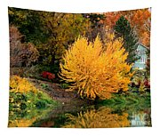 Fall Fireworks Tapestry